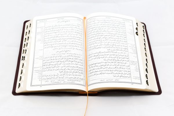 Arabic Bible 057TI-0
