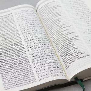 Arabic-English Diglot Bible NON DC edition-1146