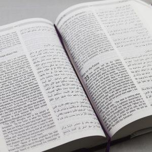 Arabic-English Diglot Bible DC edition-1143